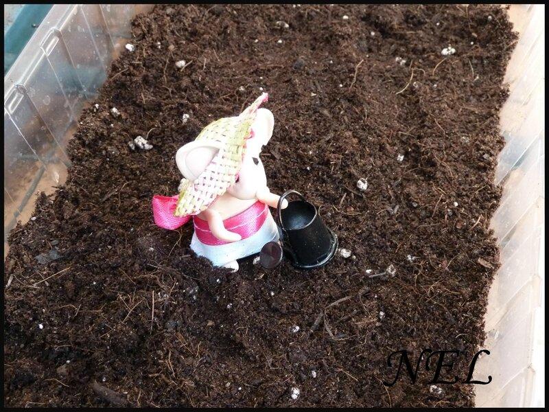 Nel au jardin (11)