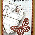 053 Petit Plus de Tortue