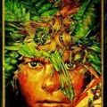 Lord of the flies, w. golding
