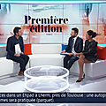 virginiesainsily05.2019_04_02_journalpremiereeditionBFMTV