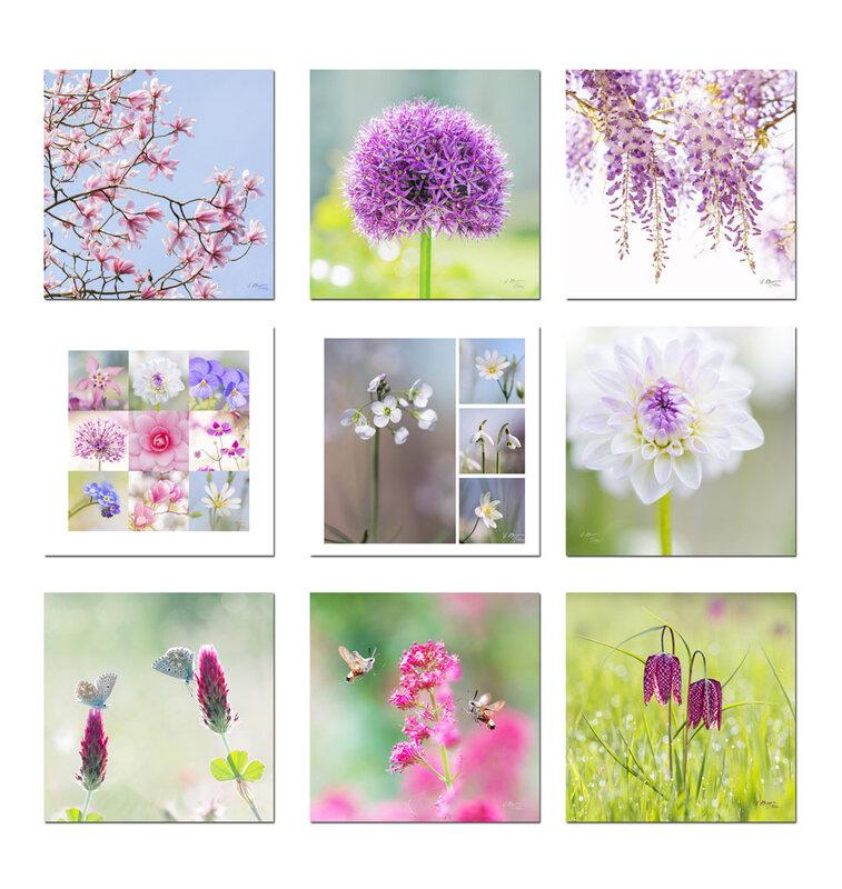 cartes-fleurs02