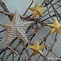 Décoration murale étoile cartonnette 2 lilybouticlou