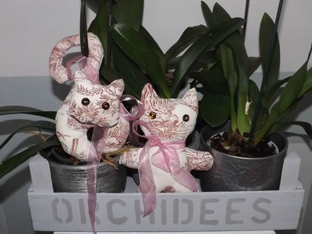 CHATS ROSES (17)