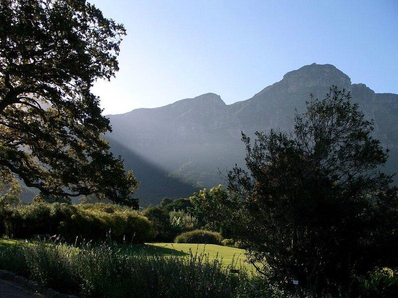 1024px-Table_mountain_kirstenbosh_gardens