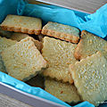 Biscuits à la coco et aux chamallows