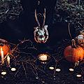Samhain, un sabbat toujours riche en enseignement