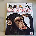 Les singes, la grande imagerie fleurus 1991