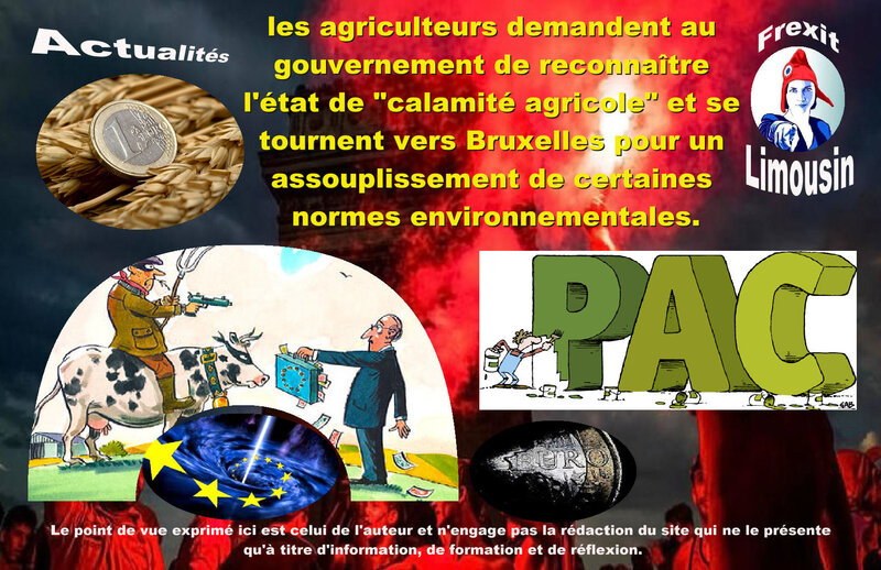 ACT CANICULE AGRICULTEURS