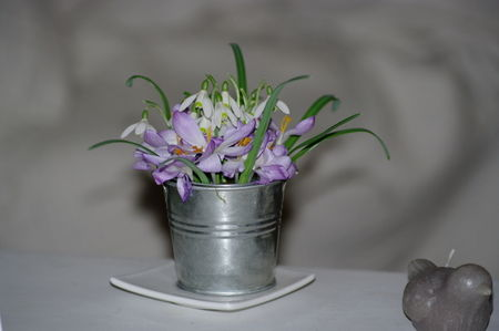 20090301_Bouquets_homemade____015