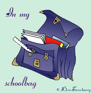 in_my_schoolbag