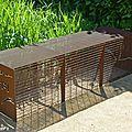 Banc en forme de cage en fer