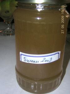 sureau_2009
