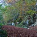 Cascade d'ars et étang de guzet (ariège)