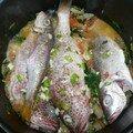Blaff de poissons de la Martinique DR Janemexique P1030100