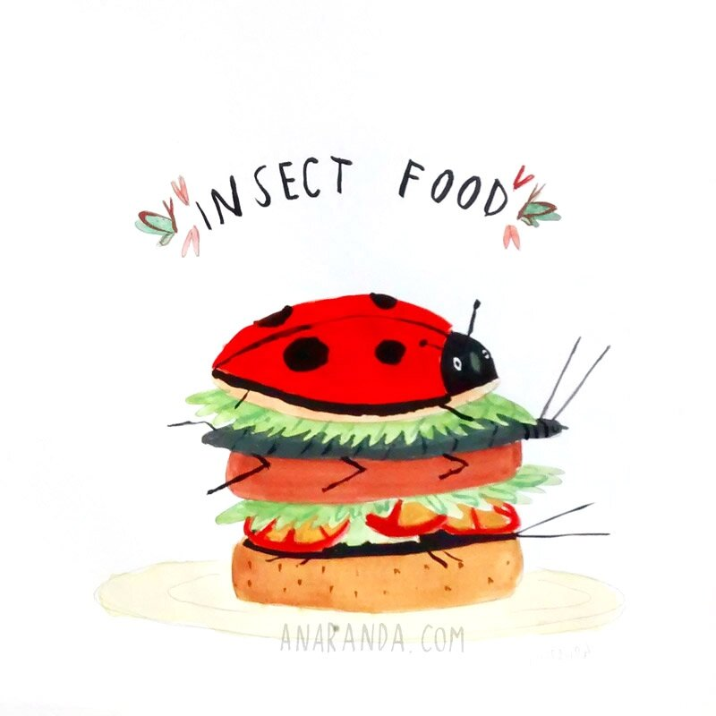 insectfood