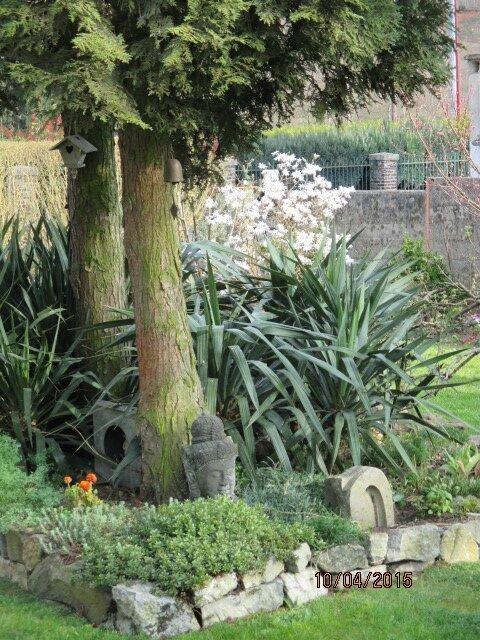 jardin 022
