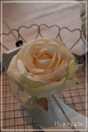 le_pouvoir_des_fleurs1