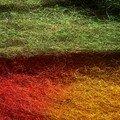 COULEUR D'AUTOMNE - SHETLAND MOORIT - colorant alimentaire 2