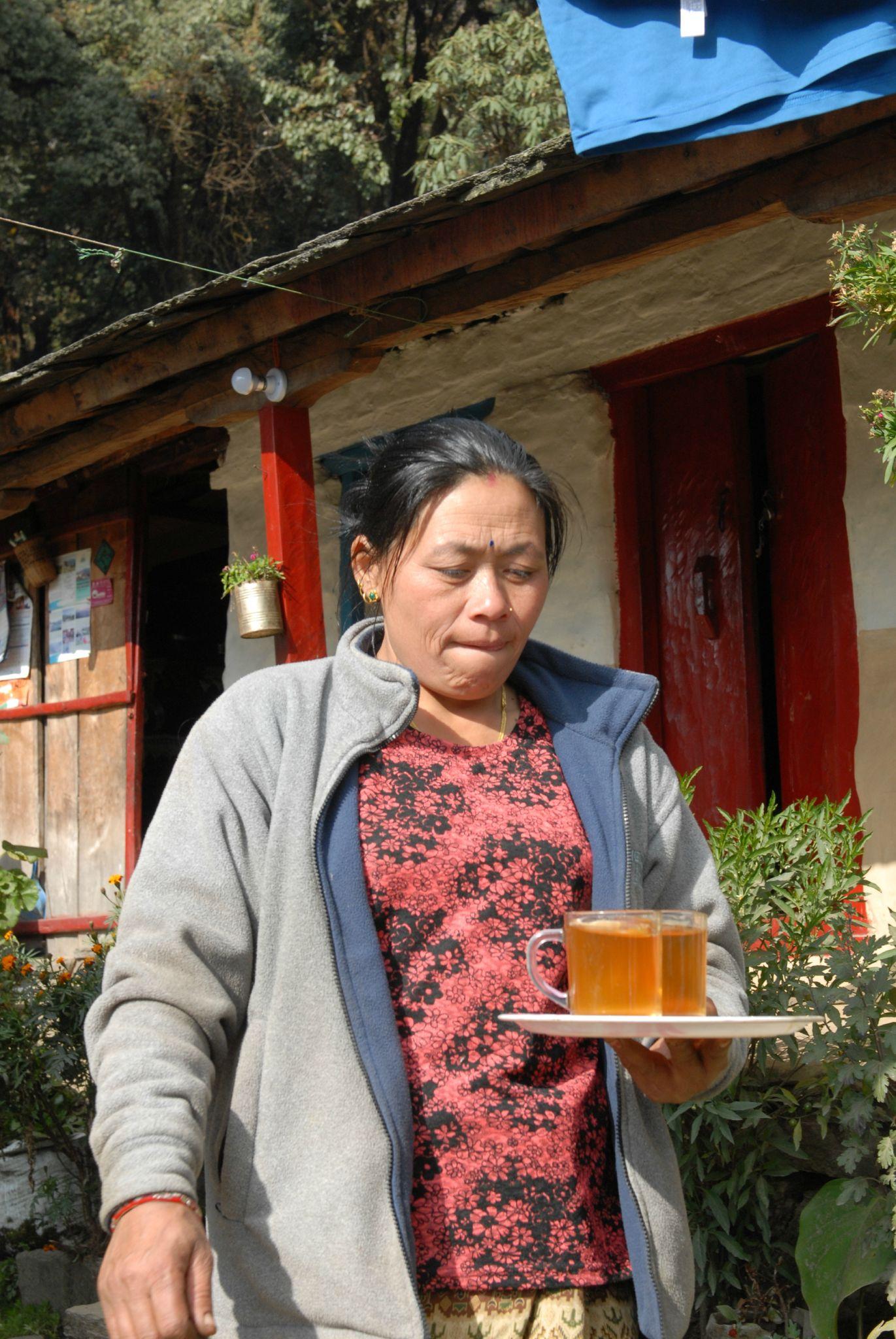 incontournable thé Népalais