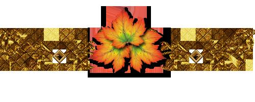 barre-automne-3