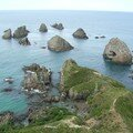 Nugget Point - Côte sud-est