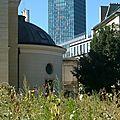009 Jussieu et l'Amphithéâtre