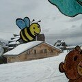 abeille-ours