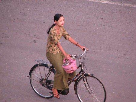 Birman_100___2_