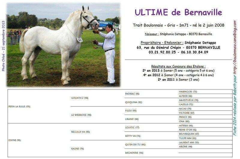 Fiche ULTIME DE BERNAVILLE 2014