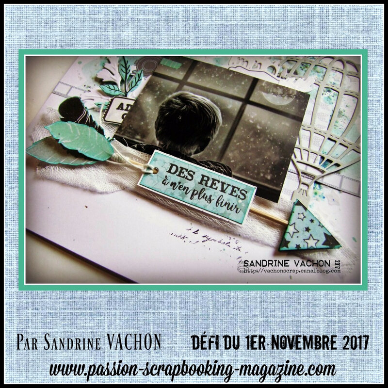 Sandrine VACHON 1er nov blog PS (2)