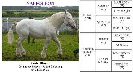 Nappoleon