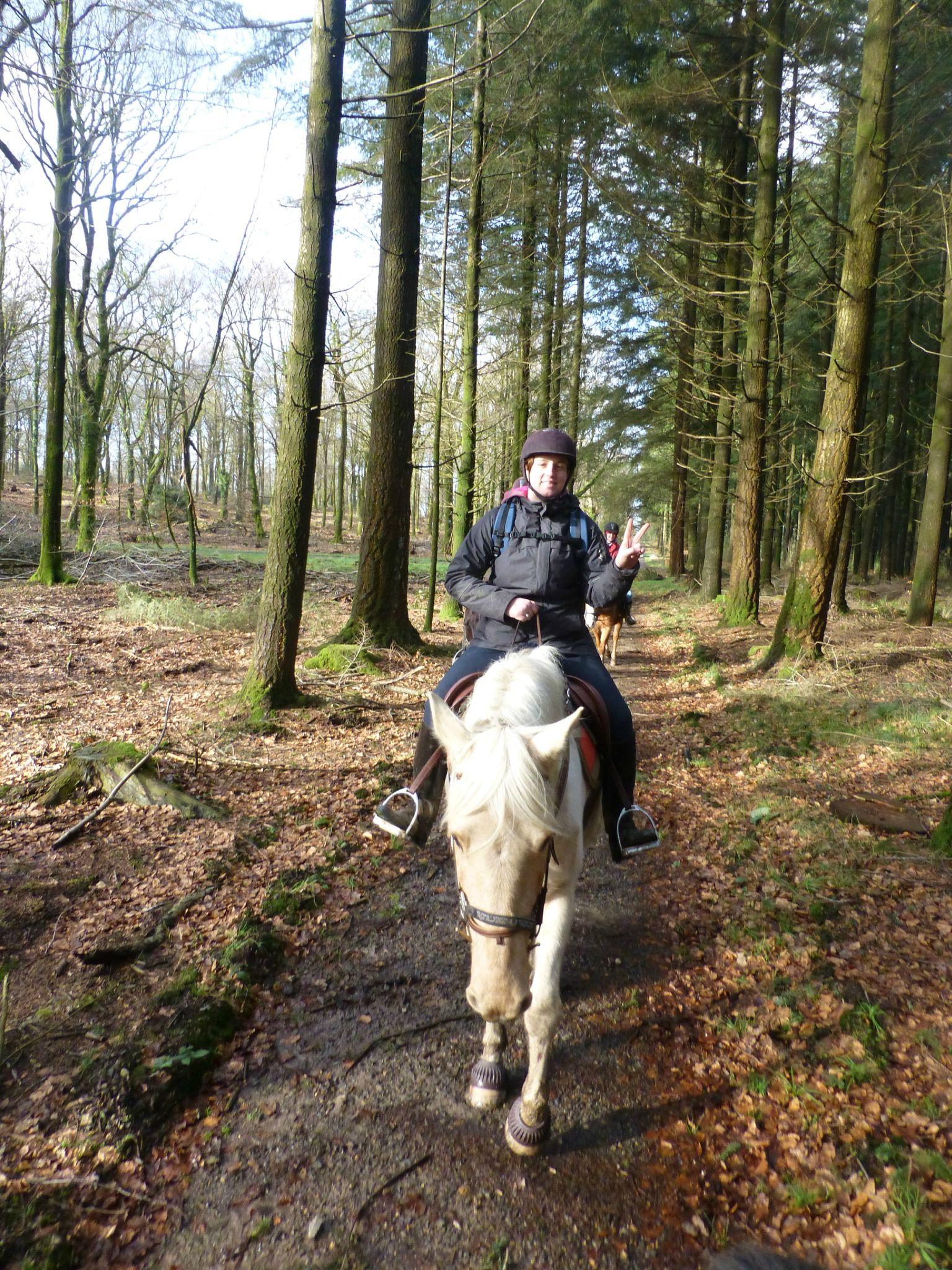 Balade à cheval dans la forêt P1080259