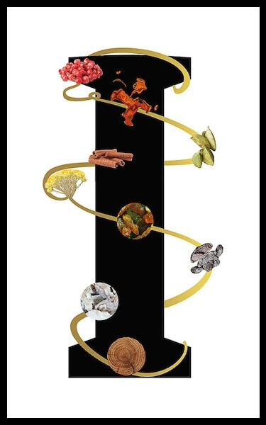 lalique fleur universelle 2
