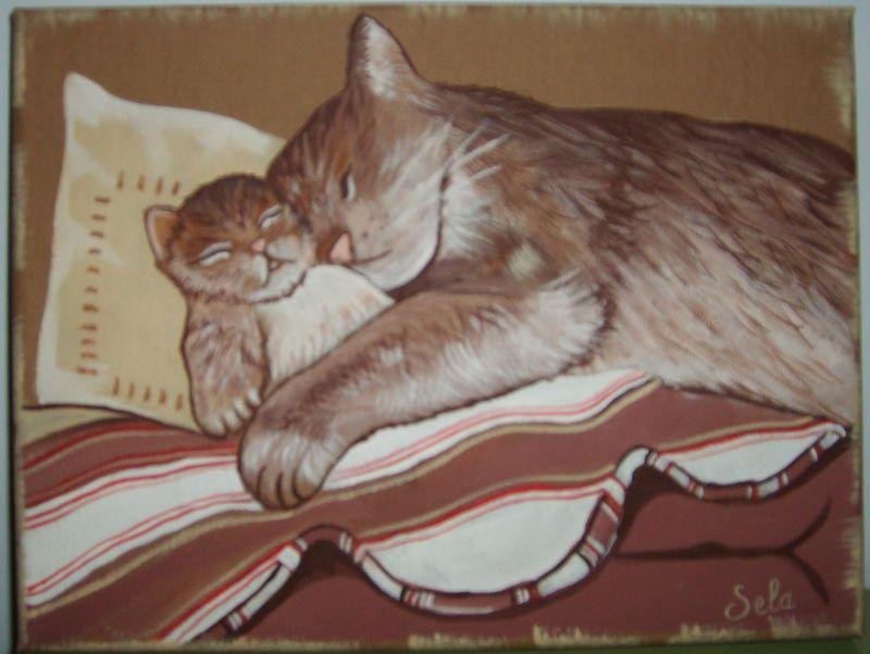 chats endormis sur boutis