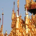 Birmanie / Yangoon / Shwedagon / Pagode