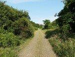 route_pavee_bulgarie