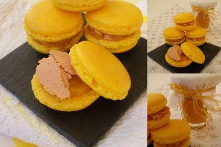 Macarons_mangue_foie_gras1