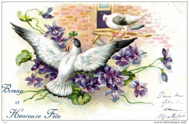 Ronde oiseaux (15)