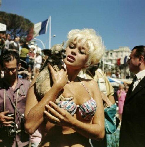 jayne_bikini_bariole-1964-cannes-2-3