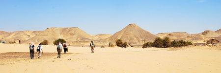 desert_blanc280