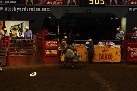 Rodeo_9
