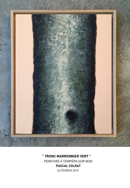 __tronc_marronnier_vert__