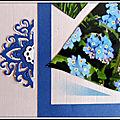Printemps au jardin - fritillaire pintade et myosotis