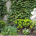 Windows-Live-Writer/Joli-printemps-au-jardin-_601C/20170331_141006_2