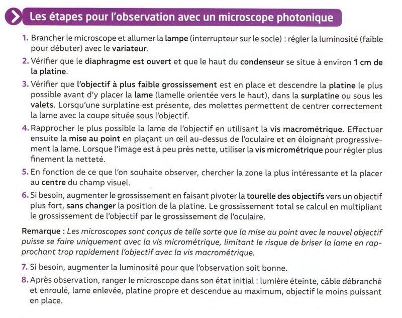 hachette l'observation microscopique copie
