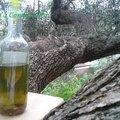 Huile d'olive piquante-recettes de base