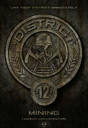 Hunger-Games-affiche-District-12