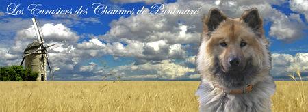 BannerChaumesdePanimar_