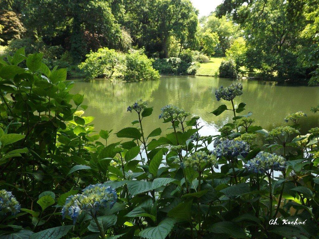 Jardins Kerdalo 8 Photo De Album Bretagne Cotes D Armor 1