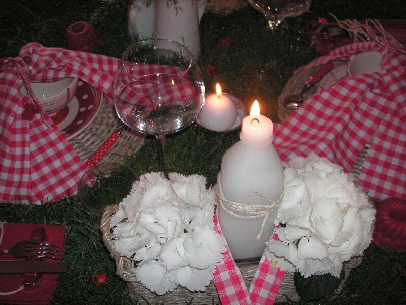 table picnic 001